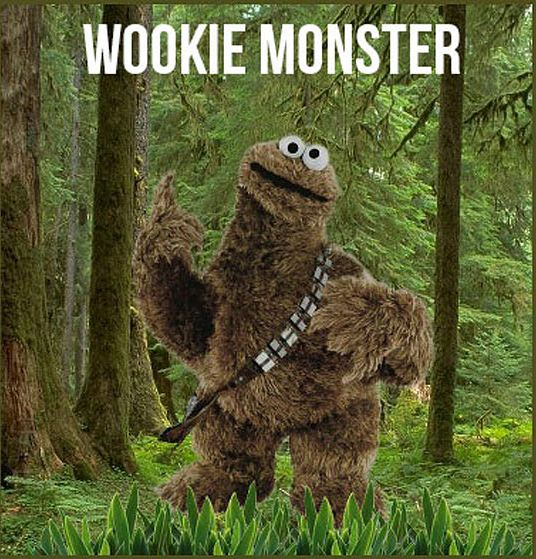 cool-wookie-monster-forest