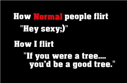 cool-how-to-flirt-quote