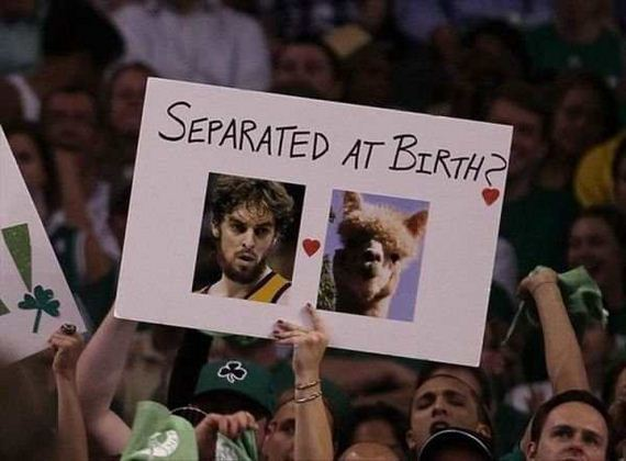 The Most Hilarious Signs Found at Sports Events