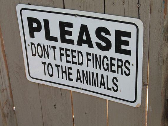 funny zoo signs barnorama