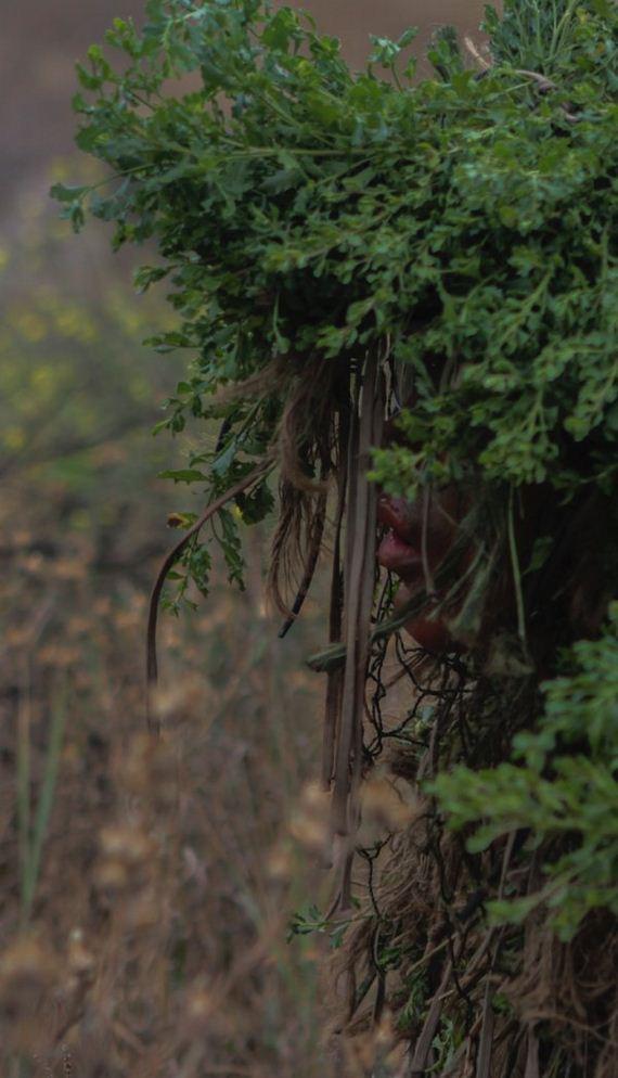 photos of hidden snipers barnorama