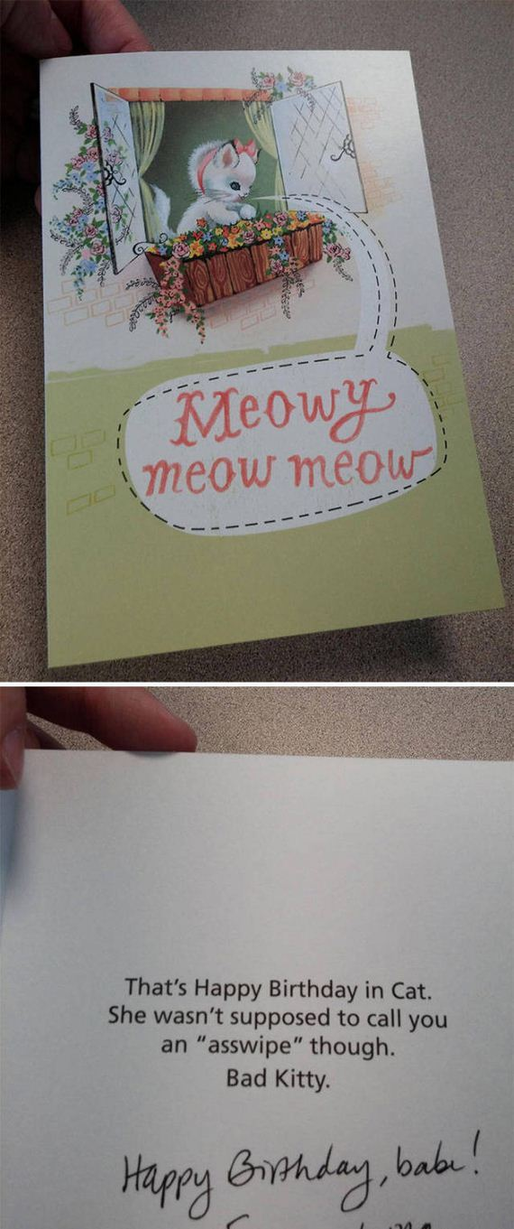 funny and unusual greeting cards  barnorama