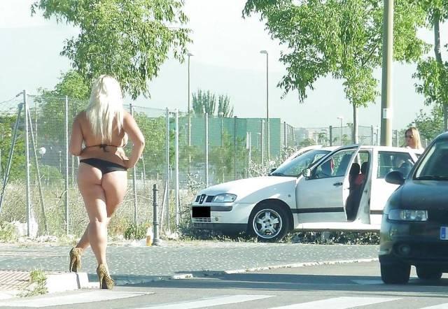 Трасса М 20 Проститутки
