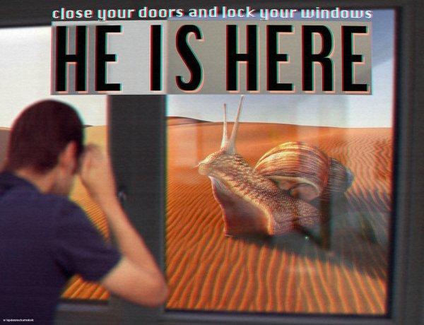 Surreal Memes For Strange Humans - Barnorama