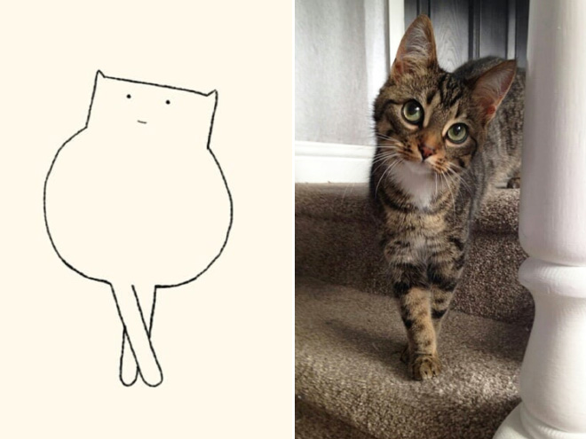 Really Accurate Cat Drawings Barnorama
