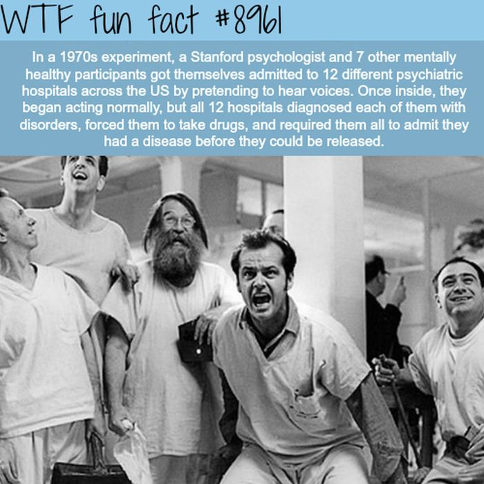 WTF Fun Facts Collecti...
