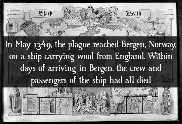 """17 Scary Facts About """"The Black Death"""" - Barnorama"""