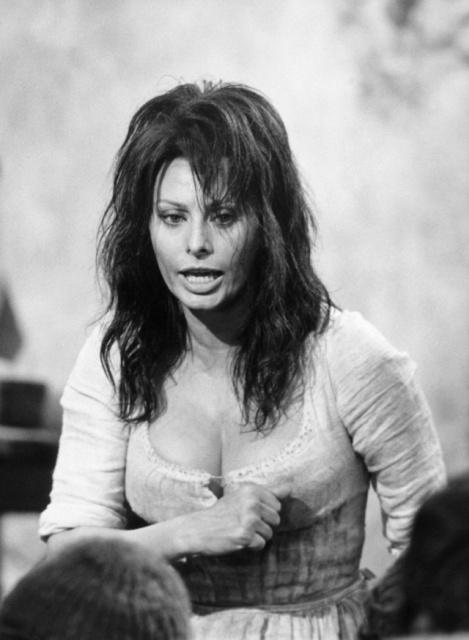 Beautiful Woman Sophia Loren - Barnorama