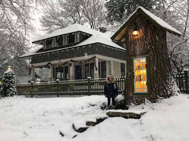 Woman Turned 110-Year-Old Dead Tree Into A Free Little Library - Barnorama