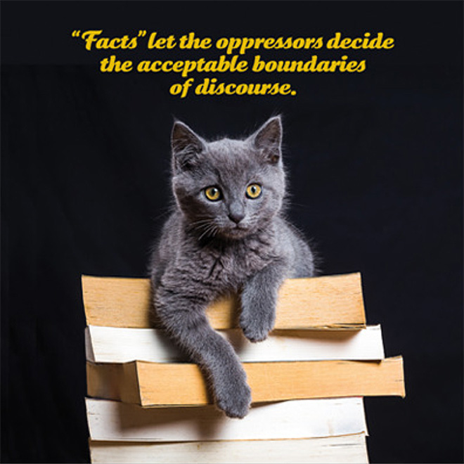 Social Justice Kittens Calendar 2019 Barnorama