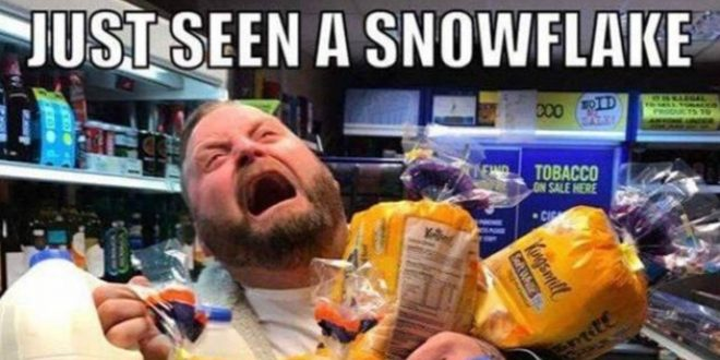 30 Funny Snow Day Memes