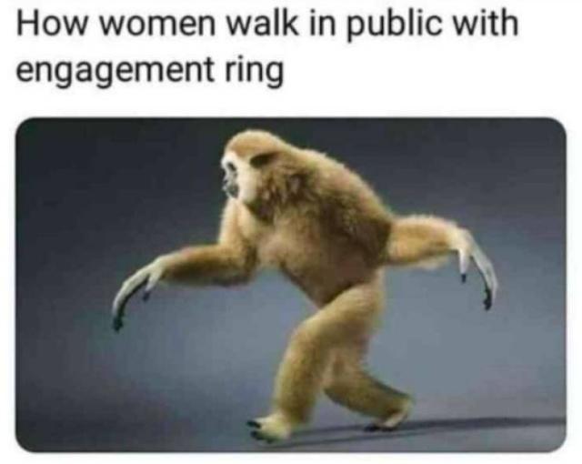30 hilarious wedding memes barnorama