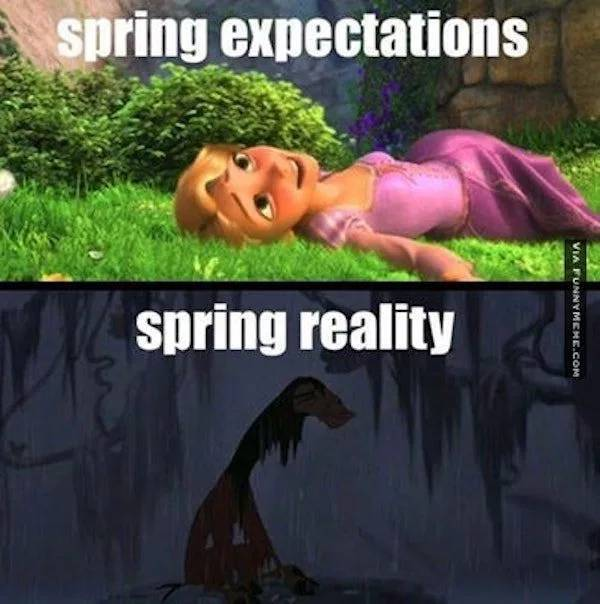 27 Funny Memes About Spring
