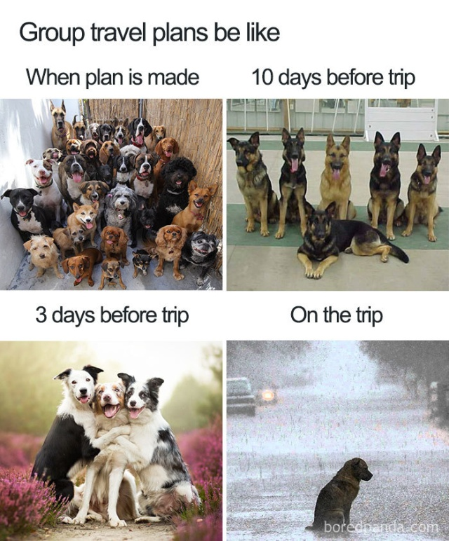 35 Funny Travel And Vacation Memes