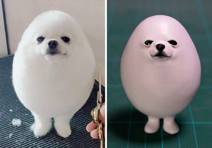 meme memes animal funny hilarious egg funniest sculptor versions creates awesome japanese sculptures into popular turns