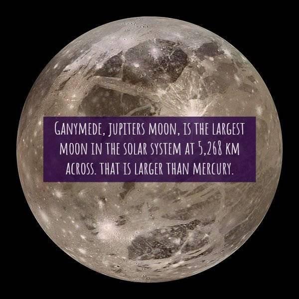 The Next 100 Years >> 15 Interesting Jupiter Facts - Barnorama