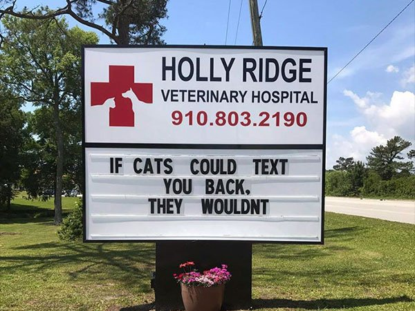 30 Veterinary Clinics With Genius Sign Makers