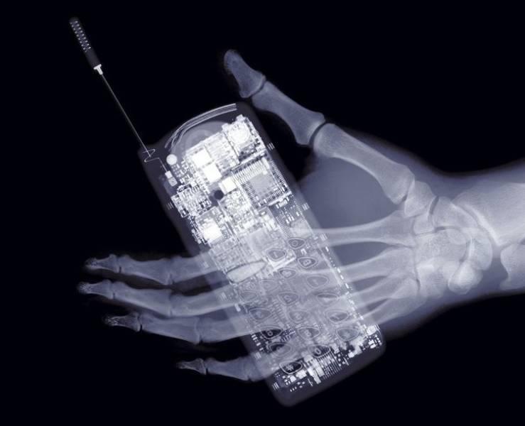 15 фотографий показывают, что от рентгеновских лучей ничего не скрыть - Barnorama